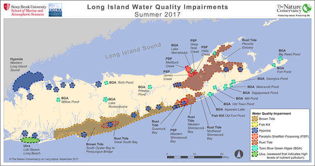 Ny Sea Grant Nysg Harmful Algal Blooms News State Of The Bays