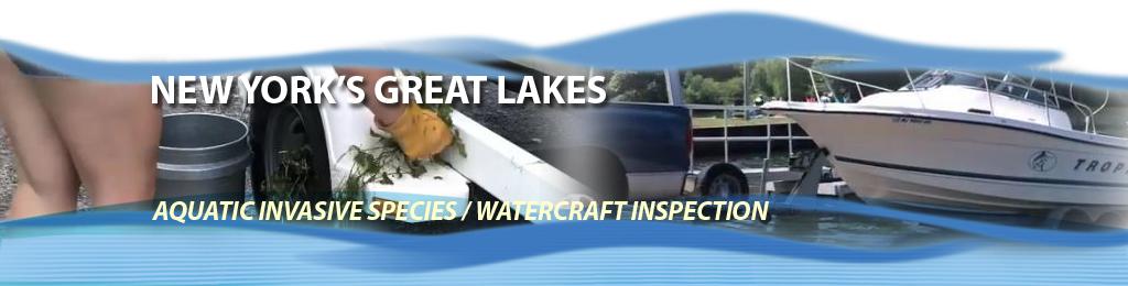 NY Sea Grant | NYSG: Great Lakes Aquatic Invasive Species